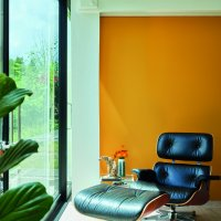 Dutch Orange W76 - Modern Eggshell
